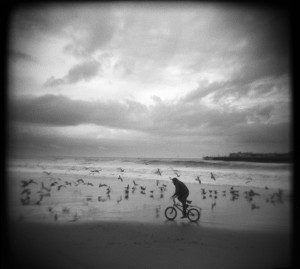 I was on Main Beach the other day during a brief break in the rain. A few surfers were out in the water, beach combers were picking out the choice pieces of drift wood, a runner or two along the water's edge and this guy on his little bike chasing seagulls.