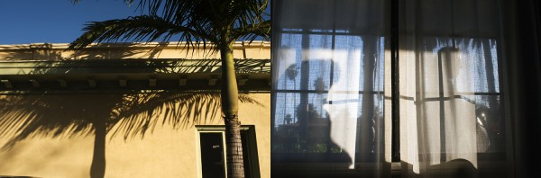 Evening diptych.