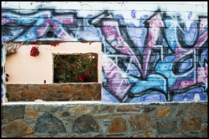 Bouganvilla and graffiti.