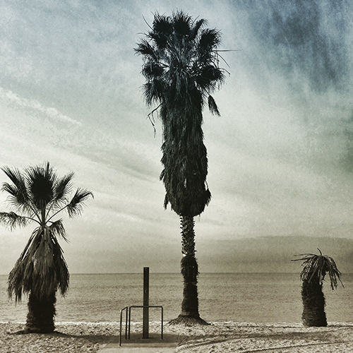Three palms and a beach shower, Doheny State beach.