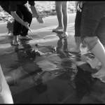 November 16, 2008, Beach dance