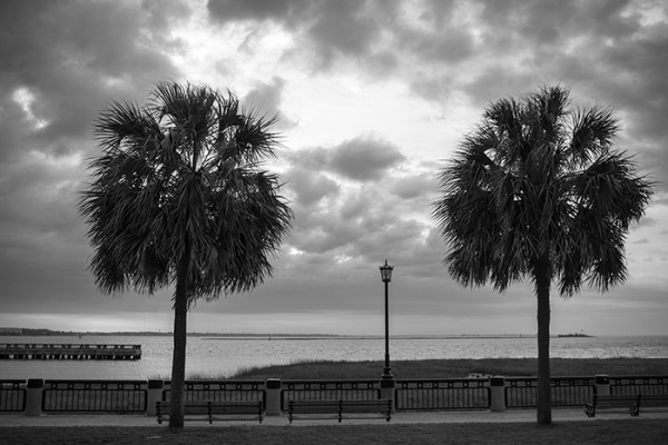 Up early in Charleston. Looking for photos.