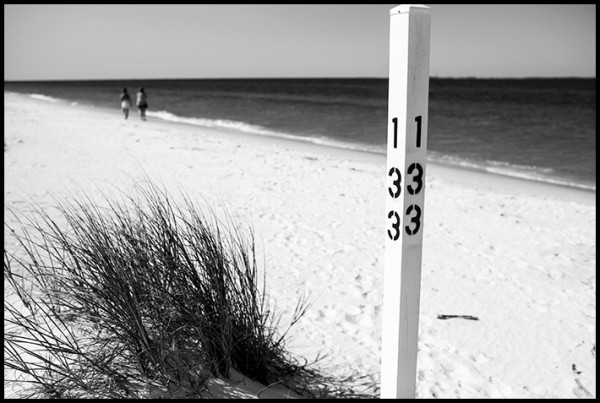 Beach walkers, near Apalachicola, Florida Panhandle.