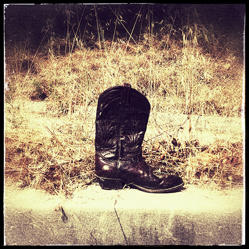 I was out walking on a Sunday morning and spied this lonely boot near the river levee. It looked old. But it was polished and well cared for. I wondered where it's partner had gone?